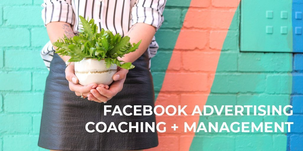 facebook advertising coaching and facebook advertising management